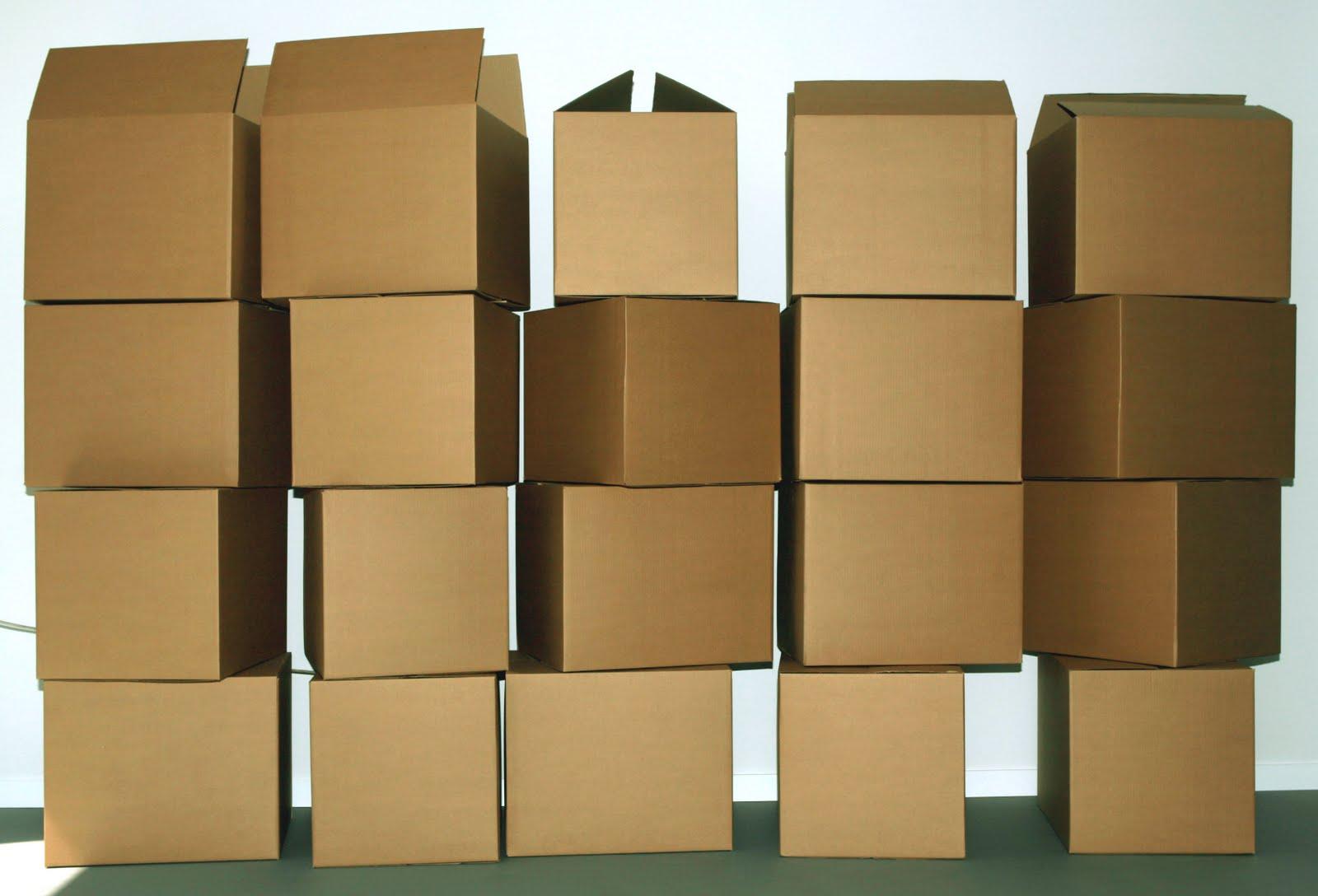 Cosas que deberías llevarte de mudanza a una casa nueva